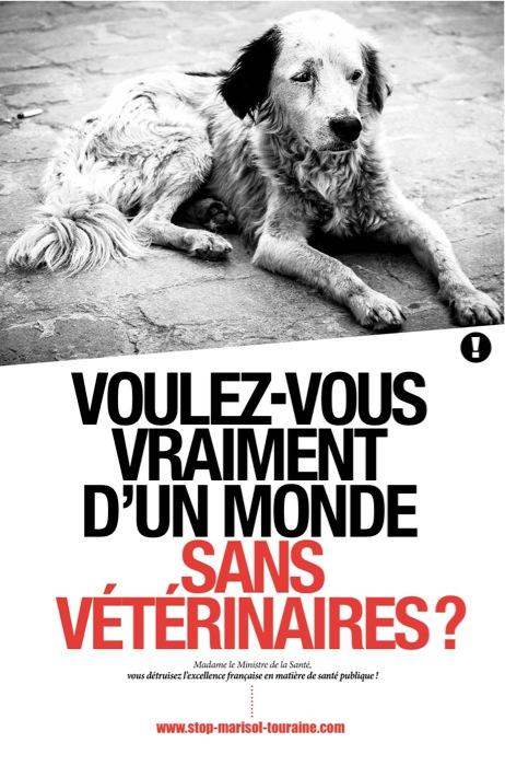 Affiche monde sans vétérinaire