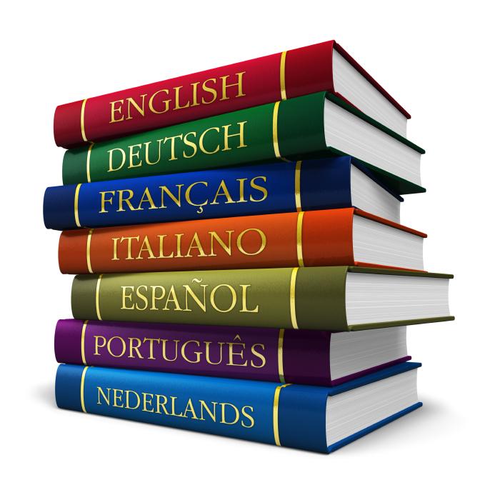 Visitez le site VETDOM en anglais, allemand, espagnol !