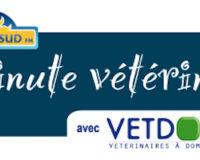 La gestion des déjections canines à Narbonne