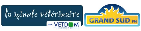 La minute vétérinaire avec Vetdom sur Grand Sud FM