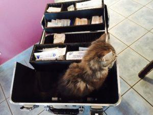 trousse urgence vétérinaire narbonne