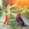 Quelle est l'origine de la relation homme-chien ?