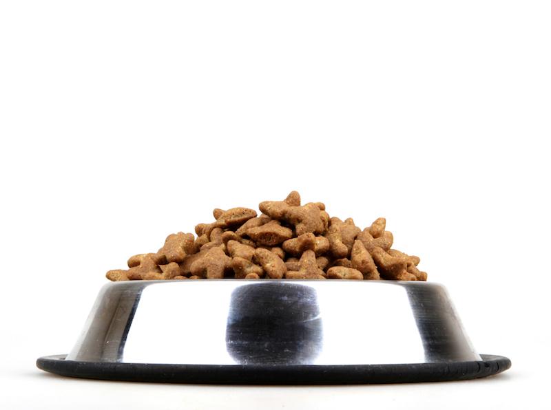 À quoi servent les vitamines contenues dans les croquettes de mon chien ?
