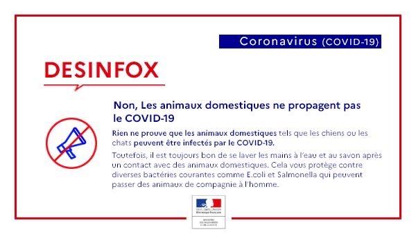 Desinfox Coronavirus